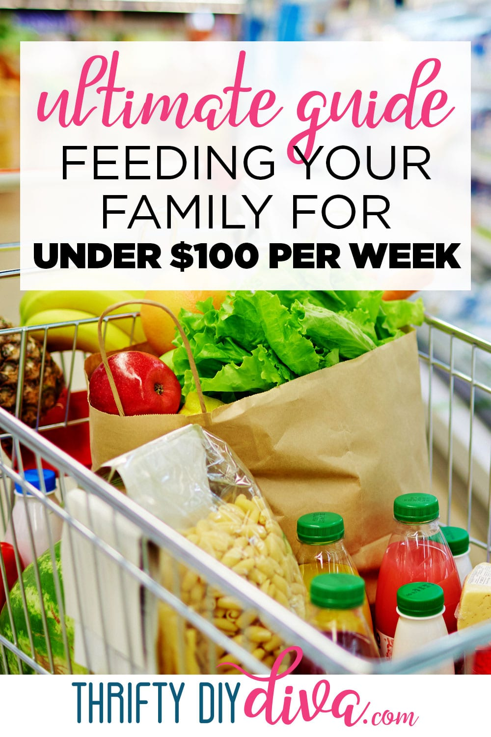 The Ultimate Guide to Feeding Your Family for Under $100 Per Week